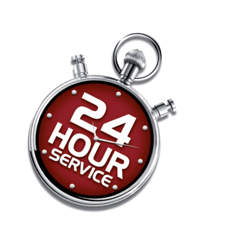 Service Giant offers a 24 hour emergency pest control service in london for rodents as well as insects in all fields of life